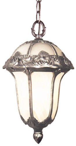 Special Lite Products Rose Garden F-3714-SW/AB Large Chain Pendant Light, Swedish -