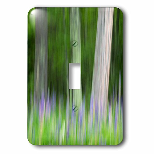 3dRose Danita Delimont - Abstracts - Abstract artistic blur of trees and lupine blossoms. USA, Wisconsin. - Light Switch Covers - single toggle switch (lsp_279800_1) (Blossom Island Light)