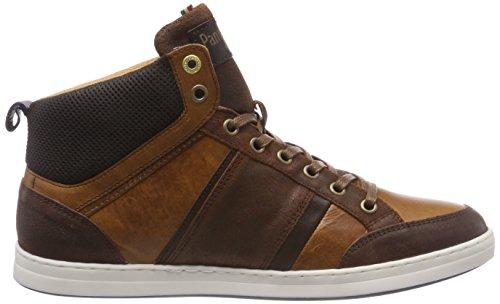 Mid Collo Uomo Sneaker Pantofola d'Oro Marrone Alto Jcu Tortoise a Shell Mondovi 7qHEUwxg