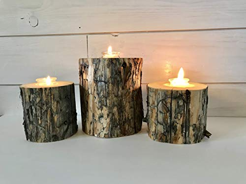 Lodgepole Pine Tree Branch Candle Holder