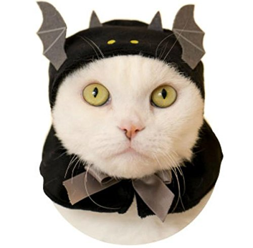 Halloween Cats Costume, Kawaii kawaii Neko Halloween-chan, Halloween Hat for Cats (Cat Halloween Costumes Bat)