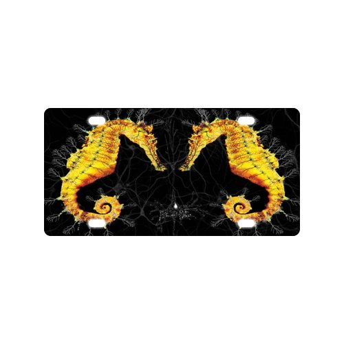 Sea horse License Plate with Personalized and Novelty -12
