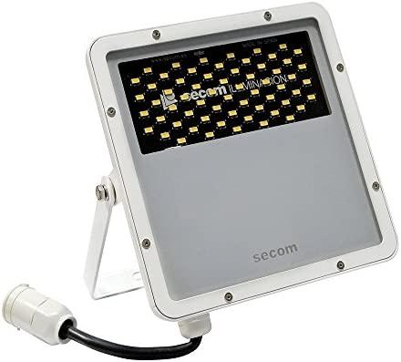 Secom Protek Proyector Industrial LED 50 W, Blanco: Amazon.es ...
