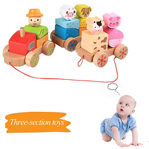 Fine Wooden Train Set - Wooden Rocking Farm Pull Along Stacking Block Games Train Toy for Toddlers Girls Boys (Multicolor)