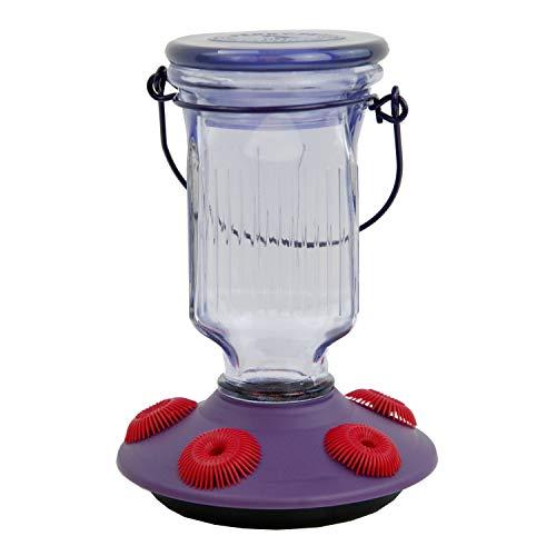 Filling Hummingbird Feeder - Perky-Pet 9101-2 Lavender Field Top-Fill Glass Hummingbird Feeder Purple 16 oz Capacity