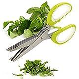 VALAMJI 5 Blade Vegetable Stainless Steel Herbs Scissor