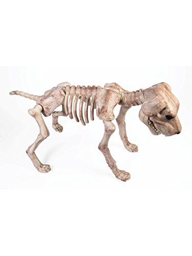 Forum Novelties 75462 Bone Skeleton Dog, Cream, One
