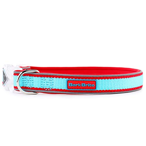 Bark Brite Eco-Friendly Bamboo and Neoprene Padded Dog Collar with Light Up Water Resistant Buckle in 3 Sizes! (Small(10-16in))