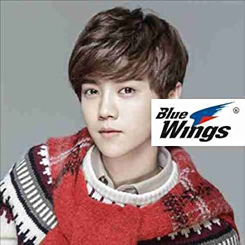 Amazon Com Korean Baby Boy Wig Short Curly Hair Fluffy Handsome