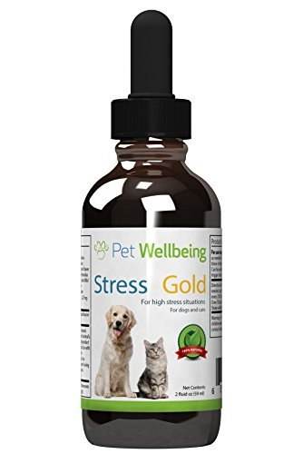 Pet Wellbeing - Stress gold for Dogs - Organic Natural Dog Calming and Anxiety Relief - For Stressful situations in Canines - 2 oz(59ml)