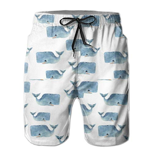 (Men's Swim Shorts Quick Dry Swim Trunks Whale Pod in Blue Mens Bathing Suits with Mesh Lining)