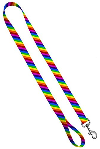 Moose Pet Wear Deluxe Dog Leash - Patterned Heavy Duty Pet Leashes, Made in the USA - 3/4 Inch x 6 Feet, Rainbow Stripe