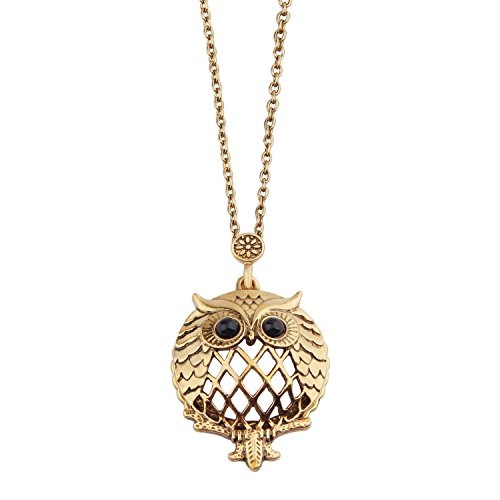 (BNQL Metal Frame Locket Magnifying Glass Necklace Grandmother Gift (Owl))