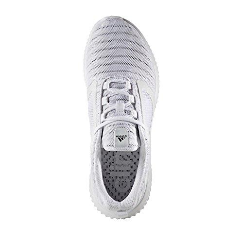 Adidas Cw Cw Climacool Adidas Climacool Cw Climacool Adidas Adidas ErqOFr