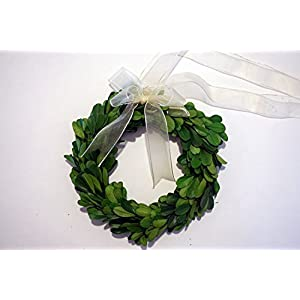Tradingsmith Preserved Boxwood Wreath 6 in 82