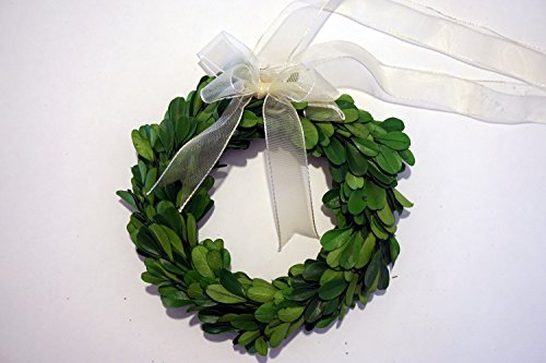 (Tradingsmith Preserved Boxwood Wreath 6 in)