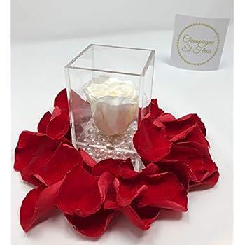 Amazon Com Handmade Preserved Flower Rose Preserved Fresh Flower