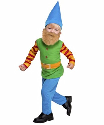 Dept 18 Toddler Boys Lil' Bearded Boys Gnome Costume Halloween, Toddler (2T)