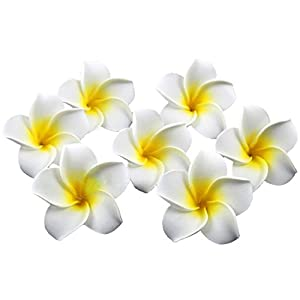 Happy Will 100 Pcs Hawaiian Foam Artificial Plumeria Rubra Hawaiian Flower Petals for Wedding Party Decoration 19