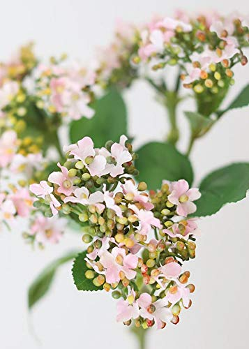 Afloral Blush Pink Mountain Laurel Silk Spring Blossoms - 15