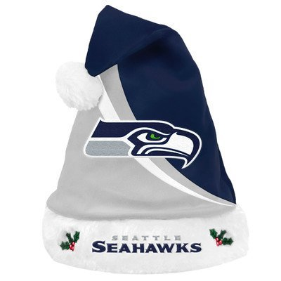 Seattle Seahawks Swoop Logo Santa Hat