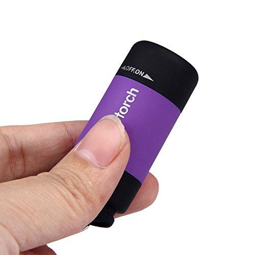 (Wffo Mini-Torch 0.3W 25Lum USB Rechargeable LED Torch Lamp, Flashlight Keychain (Purple))