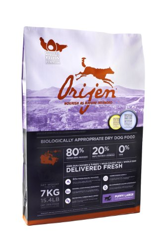 Orijen Large Breed Puppy Grain-Free Dry Dog Food, 15.4lb