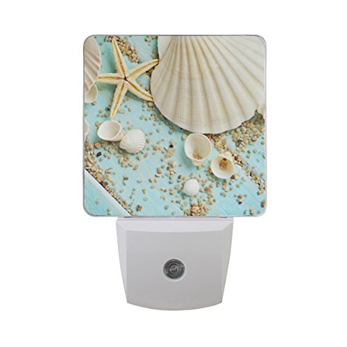 Led Shell Night Light in US - 5