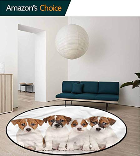 (RUGSMAT Cute Area Rugs Traditional Design,Jack Russell Terrier Puppies Pattern Floor Seat Pad Home Decorative Indoor Round-55)