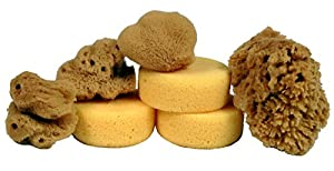 Creative Hobbies® Synthetic and Natural Silk Sponges for Painting, Crafts, Ceramics, Pottery and More, Value Pack of 7 Sponges