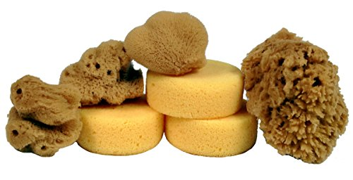 Creative Hobbies Synthetic and Natural Silk Sponges for Painting, Crafts, Ceramics, Pottery and More, Value Pack of 7 Sponges by Creative Hobbies