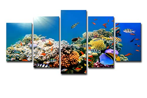 Mytinaart Paintings HD Printed 5 Piece Canvas Art Tropical Sea Coral Reef Home Wall Pictures for Living Room Decor Modern Color Underwater Eorld Seascape Posters