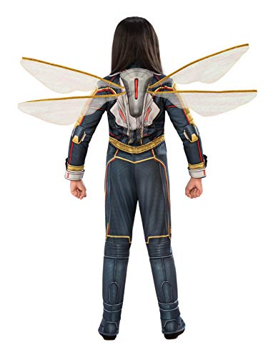 Rubie's Women's DC Comics Wasp Wings, One Size