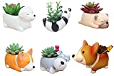 6 PCS Set Cute Cartoon Animal Corgi Pug Schnauzer Panda Labrador Shaped Succulent Cactus Flower Pot/Plant Pots/Planter/Container for Home Garden Office Desktop Decoration (Plants Not Included)