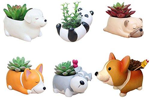 6 PCS Set Cute Cartoon Animal Corgi Pug Schnauzer Panda Labrador Shaped Succulent Cactus Flower Pot/Plant Pots/Planter/Container for Home Garden Office Desktop Decoration (Plants Not Included)]()
