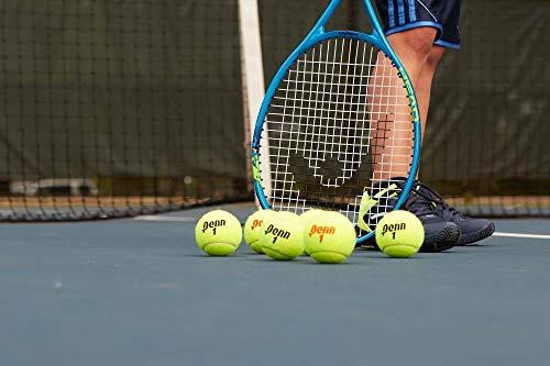 Penn Championship Tennis Balls - Extra Duty Felt Pressurized Tennis Balls