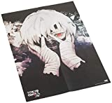 Tokyo Ghoul: re Complete Box Set: Includes