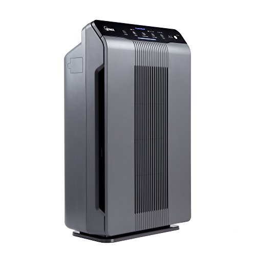 Winix 5300-2 Air Purifier with True HEPA, PlasmaWave and Odor Reducing Carbon Filter (Large Fan Air)