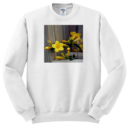 3dRose Stamp City - Flowers - A Macro Photograph of Yellow Carolina Jasmine Blossoms. - Adult Sweatshirt XL (ss_309927_4)