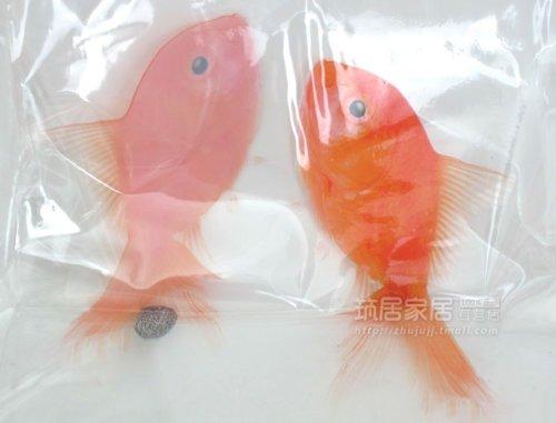 Spirella 3d Goldfish PVC Transparent Waterproof Shower Curtain Swiss Design Cartoon 180cm200cm Amazonca Home Kitchen