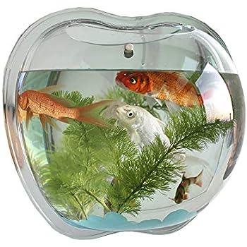Amazon Com Funnuf Apple Shape Wall Mounted Acrylic Fish