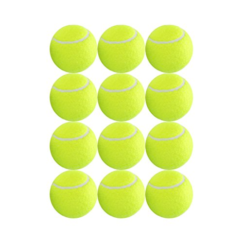 ianoni 12 Pack Training Tennis Balls Great Tennis Balls for Lessons,Practice,Playing with Pets-Closeable Mesh Carrying Bag for Easy Transport and Storage
