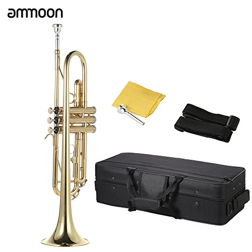 ammoon Bb B Flat Brass Trumpet Gold-painted Exquisite for sale  Delivered anywhere in USA