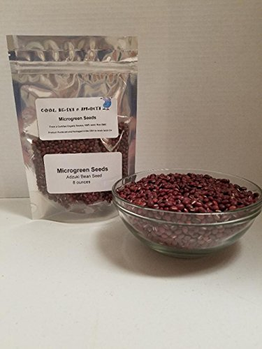 Adzuki Sprouting Seed (