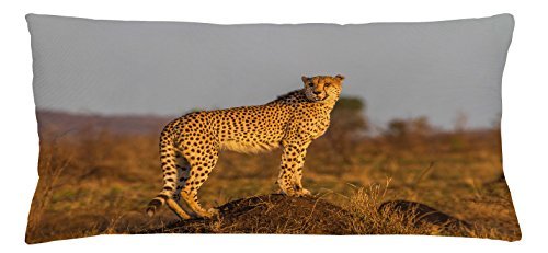 Ambesonne Safari Throw Pillow Cushion Cover, African Wild Animal Cheetah Standing on Termite Mound Savannah Nature View, Decorative Square Accent Pillow Case, 36 X 16 inches, Ginger Apricot Dust