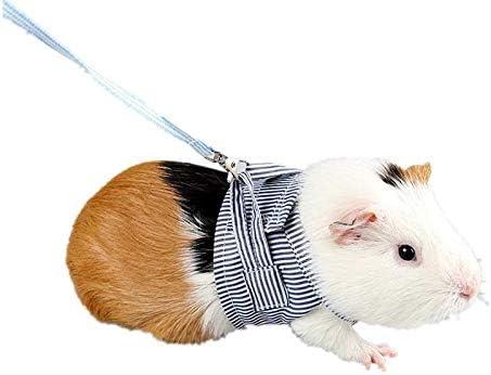 Ogquaton 1 Unids Hamster Chaleco Correa Tela de algodón ...