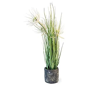 Boston International Decorative Grass in Cement Container Pot, Sunny Flower Yellow 51