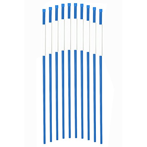 FiberMarker 48 Inch Blue 20-Pack High Visible 1/4 Inch Dia Snow Poles, Driveway Markers With 360 Degree Reflective ()