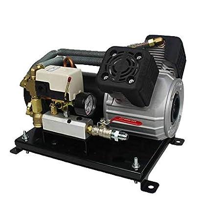 Amazon.com: Two Star FD-D2S-DC12V Professional 12V DC On Board Oil Free Twin Piston Air Compressor: Home Improvement