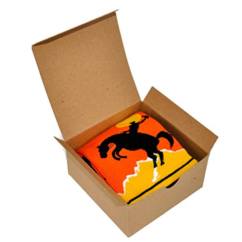 Themed Patterned Men's Novelty Socks 1 Pair in Small Gift Box (Rodeo)
